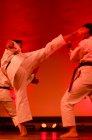 wiemaikai_2014_samurai_hayashi_karategruppe_(ThomasH)_067
