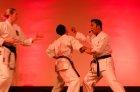 wiemaikai_2014_samurai_hayashi_karategruppe_(ThomasH)_068