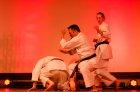 wiemaikai_2014_samurai_hayashi_karategruppe_(ThomasH)_069