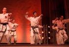 wiemaikai_2014_samurai_hayashi_karategruppe_(zappy)_008