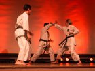 wiemaikai_2014_samurai_hayashi_karategruppe_(zappy)_009